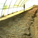 Ancient Chinese Tomb Found with Chariots and Horses