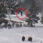 Bigfoot Caught on Yellowstone Webcam